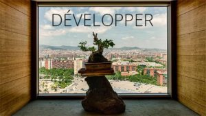 DEVELOPPER